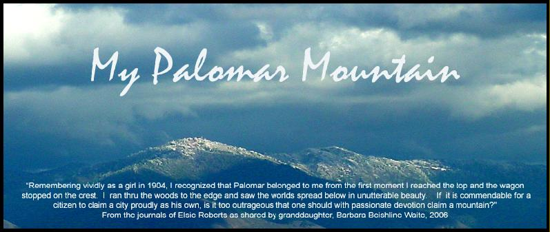 Palomar Mountain Real Estate